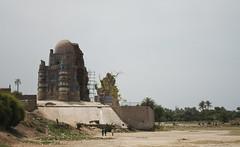 Mausoleum of Bibi Jawindi, from afar (lukexmartin) Tags: pakistan sharif shrine muslim islam mausoleum punjab bibi uch jawindi