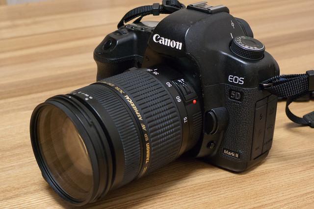 Canon EOS 5D Mark II + TAMRON SP AF28-75mmF/2.8 (A09)