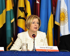 Seminar on the Role of the Private Sector and Other Actors in Supporting Democracy (OEA - OAS) Tags: democracy oas oea klinger organizationofamericanstates organizacindelosestadosamericanos
