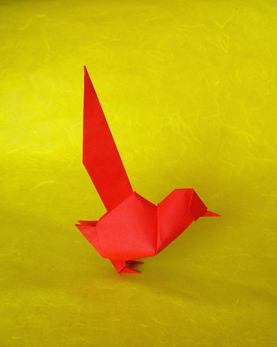 Colilargo (Длиннохвостая птица)