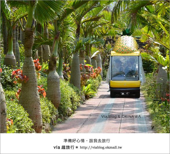 【via的沖繩旅誌】名護鳳梨公園~可愛又香甜的鳳梨樂園!10