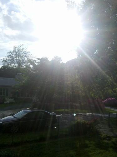 Spring Sun Shower