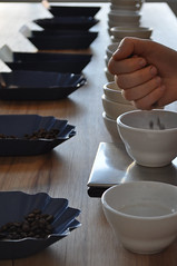blue bottle cupping