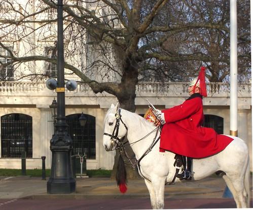 London Guard on horse by Danalynn C