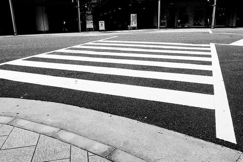 niigata monochrome 36