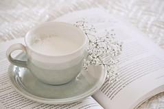Daydreamers milk (Lifebug) Tags: summer white flower cup book milk letters daydream daydreamer 2011 lifebug