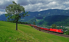 Termszet (tau280) Tags: train sterreich rail railway zug trains taurus freight bb ausztria eichberg gter gterzug 1116 vonat semmeringbahn teher ringexcellence