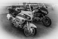 Bright side (Azarbhaijaan) Tags: honda blackwhite pentax motorcycle kuwaitcity souqsharq baghdadi pentaxk10d azharmunir drpanga