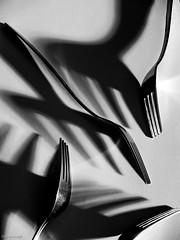 Forks and shadows (Daniel Arnaldi) Tags: black highcontrast reflection stilllife shadows shinny white cutlery fork metal photography studio danielarnaldiphotographer