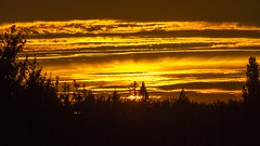 Golden sunset (Renalicious) Tags: canon7d ef18200mm sunset warmcolours warmcolors mapleridge vancouver evening clouds ray contrast layers