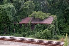 Blair Overgrown Depot