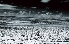 ...road 169... (Nevada desert) (UBU ) Tags: africa blue usa blancoynegro blackwhite time noiretblanc blu nevada blues bleu bianconero biancoenero sangue pellicola genocidio analogico sterminio gelatinsilverprint blackwhitefilm nikormat tutsi ruanda hutu kodaktrix200 blureale blupolvere bluacqua ubu blutristezza unamusicaintesta blurassegnazione blusolitudine landscapeinblues bluubu blumelancolia bluusato blurubato unasocietdimerda