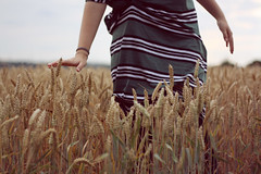 (oOTheSmallOneOo) Tags: green nature girl field corn hand dress wheat grain cereal crop