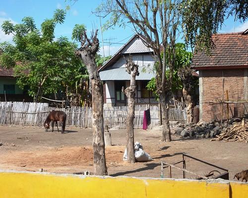 Sumbawa 4-Plage de Lakey (26)
