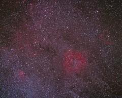 Legacy Astrophotography: IC1396 in Cepheus (Noctcaelador) Tags: film analog cepheus milkyway kodake200 pentax67 ic1396 pixinsight Astrometrydotnet:status=solved Astrometrydotnet:version=14400 300mmsmctakumar legacyastrophotography Astrometrydotnet:id=alpha20110768841881