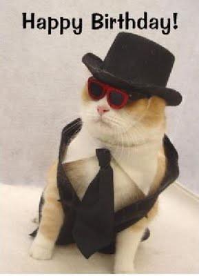 cat_birthday_parties_14
