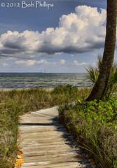 Bokeelia, Florida (tropicdiver) Tags: gulfofmexico clouds florida palm pineisland bokeelia