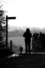 Whatever the Weather (Matthew Brown 7) Tags: trees bw dog wet rain silhouette walking landscape signpost footpath oakwellhall