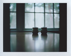 Light Spill. (john-ralston) Tags: light color mamiya film window mediumformat table polaroid pepper bokeh salt testshot firstshot mamiyarb67pros instantfilm fujifilmfp100c instantback 90mmf38sekorclens