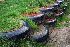 Planter-Tire-Retaining wall_Pinterest (DougBittinger) Tags: