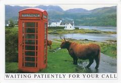 GB-822155 (relesplop) Tags: unitedkingdom recibidas