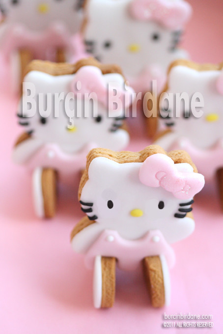 Hello Kitty Cookie 3
