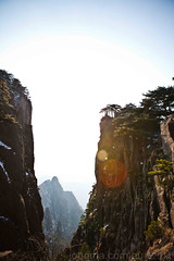 Pine (Typemutha) Tags: china favorite mountain art john landscape ma photography photo search scenery artist artistic top unique review champion picture award peak cliffs best professional most excellent species prize favourite popular voted huangshan highest outstanding viewed anhui the rated reviewed tourisim prestigious darqhorse