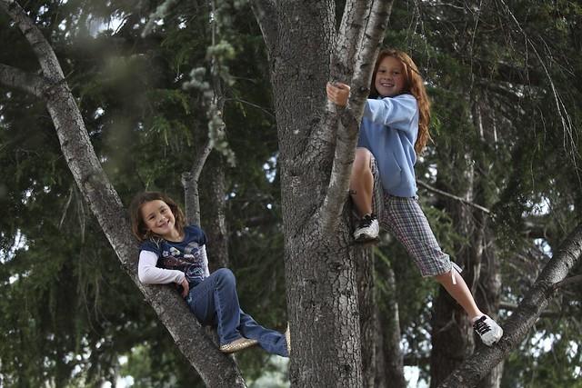 NorCal Tree Kids