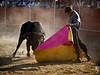 Pablo Lechuga (FJimenez92) Tags: festival toros bullfight elescorial pablolechuga ivanvicente sergioaguilar adolforamos victorpuerto