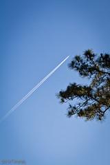 167/365 (6/16) ([PURE image] Nick Lin) Tags: sky airplane  canonef100mmf28lmacroisusm
