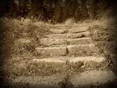 Stone Steps #2 (BlackAndBlueBeauty) Tags: grass stone montana butte steps