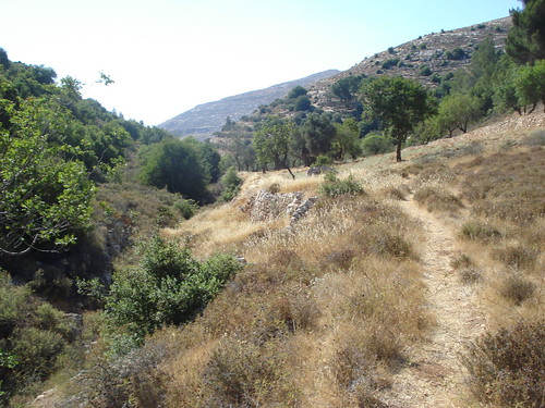 Trail to Battir