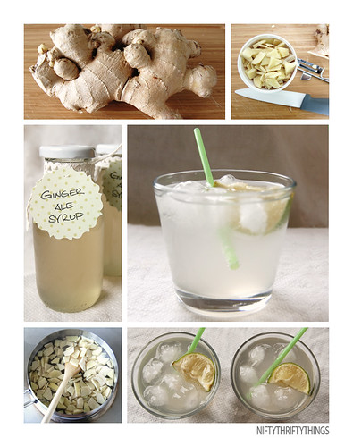 {homemade ginger ale syrup}