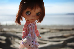 Gigi visits the beach near our house in Edmonds...She is thinking about her cousins and says a special hello to Sia and Auntie Olga...we love the beach so much...