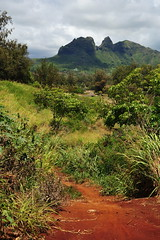 Shortcut (Chris Hunkeler) Tags: red hawaii path soil tropical anahola