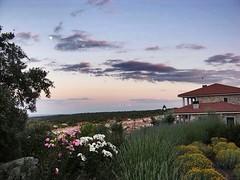 Disfruta de los Cielos Infinitos de Colmenar del Arroyo. A un paso de Madrid. Te esperamos (Albus Albi Alojamientos Rurales) Tags: madrid sky naturaleza del rural hotel casa spain skies peace spanish cielo cielos infinito con arroyo albi encanto albus tranquilidad rurales colmenar alojamientos