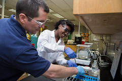 _FAMU_College_of_Engineering0009_2014-04-24 (famu.univadv) Tags: female landscape lab faculty collegeofengineering famu