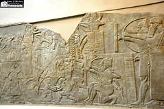 Wall reliefs depicting a battle scene, Nimrud (Sumer and Akkad!) Tags: museum king iraq royal battle scene vultures british chariot mesopotamia enemy prisoner assyria assyrian ashurnasirpal nimrud kalhu northwestpalace calah