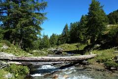 Vallon de Rchy (bulbocode909) Tags: valais suisse vallonderchy montagnes nature forts arbres ponts rivires larche vert bleu