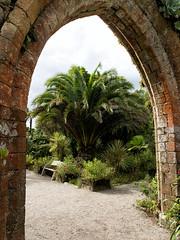 Old Abbey, Abbey Gardens, Tresco (Kevin James Bezant) Tags: islesofscilly ios abbeygardens tresco