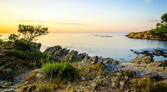 DSC_3012 (fabiennethelu) Tags: cadaqus portlligat borddemer faade mer plage rue village autofocus seascape rocks coast sea water beach landscape spain nikon