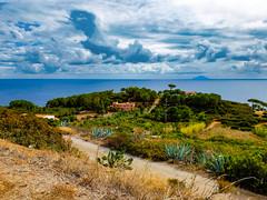 L'isola di Montecristo vista dall'Isola D'Elba (RONALD MENTI) Tags: isoladelba photo photography italia italy toscana paesaggio landscape