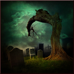 The tree in the cemetery (jaci XIII) Tags: tree cemetery surrealism headstone cemitério árvore surrealismo lápide