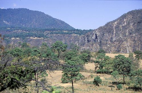oak savanna, Vulcan Colima, Colima MX, 1997_03_23 001.jpg