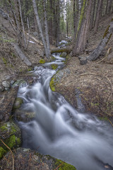 Rail Creek HDR (x-ray tech) Tags: california park wood vacation portrait motion blur cold tree wet water rock vertical america creek forest photoshop canon relax eos leaf moss spring high cool nice interesting log highway perfect stream long branch place dynamic angle god map air debris hill bracket wide may fast peaceful rail down hike fresh special clean explore trail filter national adobe yosemite serene wilderness capture range slippery hdr bless beatiful 41 splendid density neutral photomatix exposore cs5 ef1635mmf28lii 5dmarkii