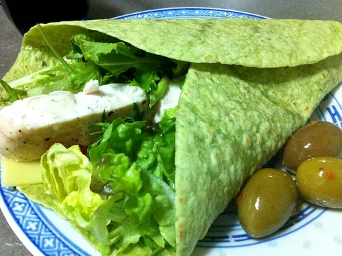 Baked Chicken Wrap by mjd-s