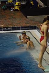 Day #05 (LenazPic) Tags: panorama plongeon montréal mtl machine québec pont animaux vue qc piscine biodôme entrainement nageur compétition tourdemontréal vuepanoramique iledemontréal environnements coupeducanada lasphère