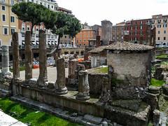 DSCN5987 (Randy Kasal) Tags: italy rome roma argentina sacra di randy largo kasal