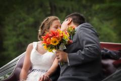 Fairy Tale Wedding (janedsh) Tags: sharpfamily horner hornerpartyof2 flowers kiss ed carriage people morgan wedding holmanphotoscom bouquet holmanphotography photobyjane