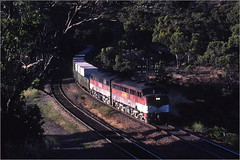 Out of the shadows (Bingley Hall) Tags: transport train transportation rail railway railroad trainspotting locomotive engine diesel australia southaustralia sleepshill adelaide an anr australiannational alco aegoodwin freight broadgauge dl500b 251b world